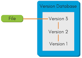 Example of local version control system.